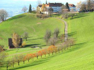 Natur Gubel - Kloster Maria Hilf - Wallfahrt